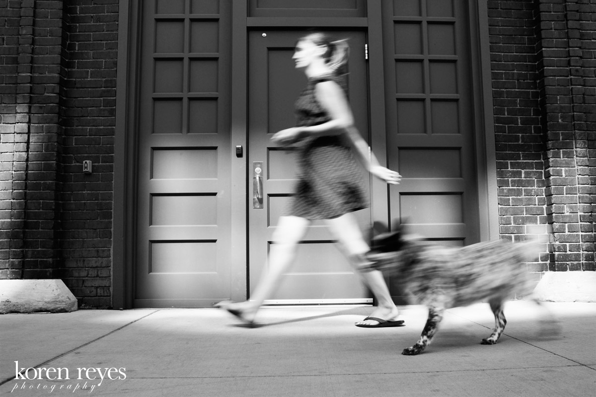 Ellie Mae strolls through the North Loop in downtown Minneapolis. Australian cattle dog portrait on the streets of Minneapolis
